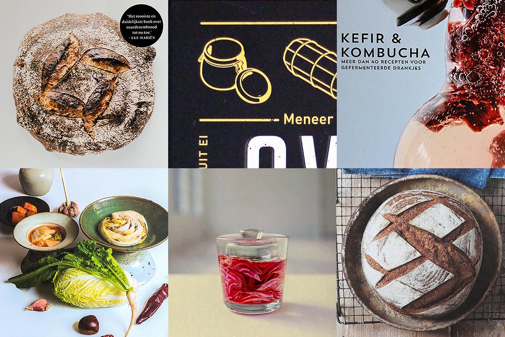 Welk fermentatieboek moet ik kopen? @ Lauriekoek.nl